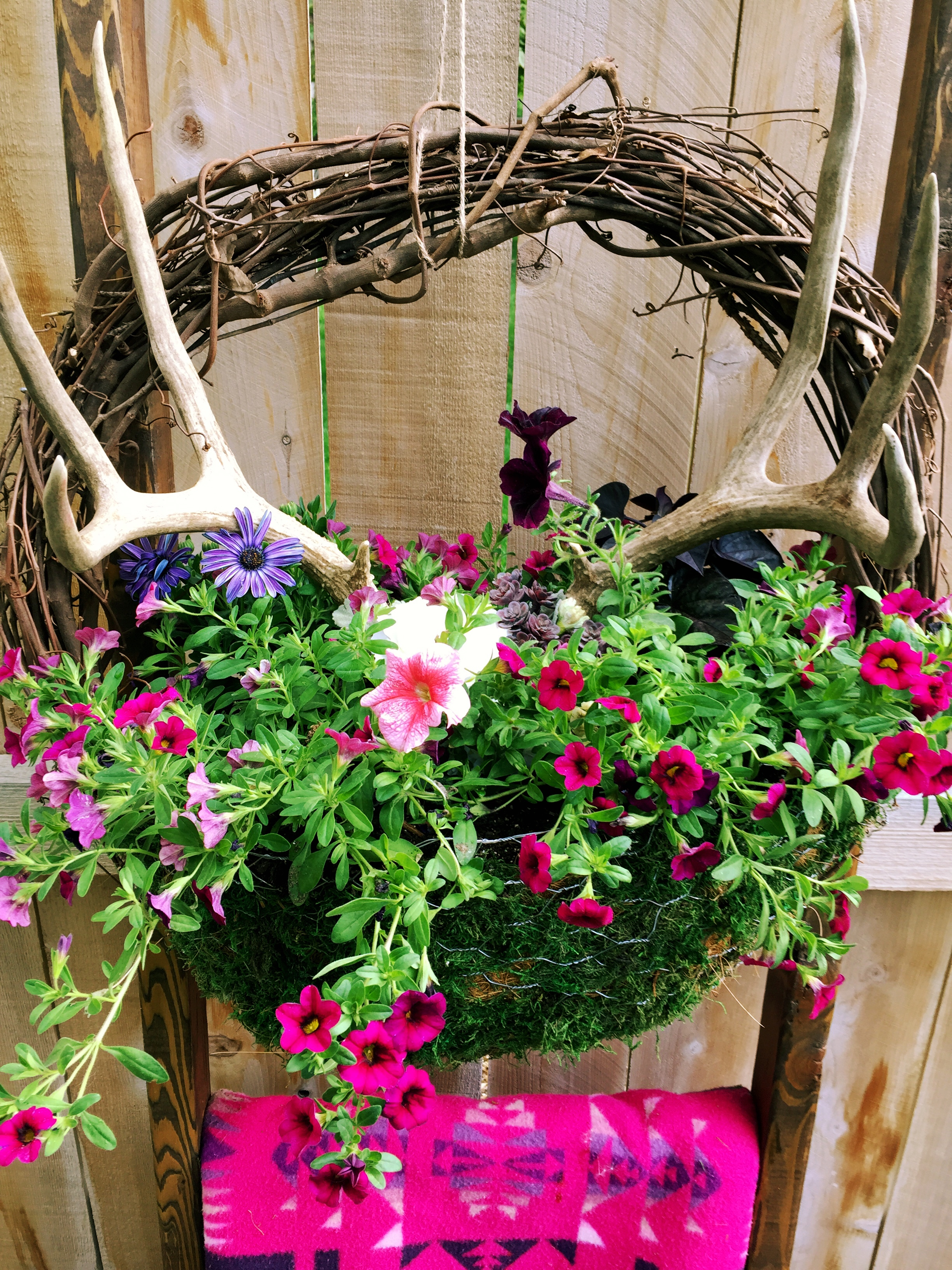 DIY Grapevine Hanging Basket